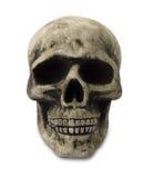 Crâne humain avec le chemin Photographie stock