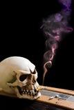Crâne sur le cercueil Photo stock