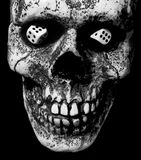 Cráneo con los dados Foto de archivo libre de regalías