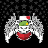 Cráneo en boina con Eagle emblema de la guerra Imagen de archivo