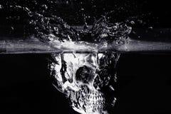 Cráneo humano blanco y negro Imagen de archivo libre de regalías