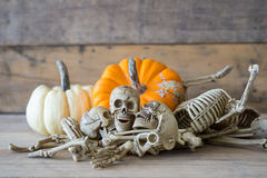 Cráneo humano en el fondo, el esqueleto y la calabaza de madera en la madera, fondo del feliz Halloween Imágenes de archivo libres de regalías