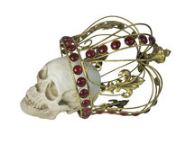 Cráneo que lleva la corona de oro Fotografía de archivo libre de regalías