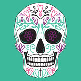 Cráneo simple mexicano del azúcar Fotografía de archivo