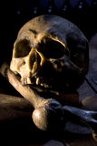 Cráneo y huesos Imágenes de archivo libres de regalías