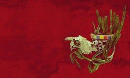 Cráneo y planta de tiesto mexicana del cactus del estilo Fotos de archivo