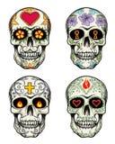 Cráneos con las flores Fotos de archivo libres de regalías