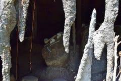 Cráneos y cueva Imagenes de archivo