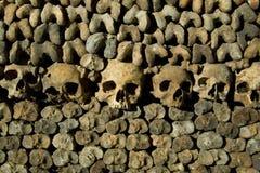Cráneos y huesos Imagenes de archivo
