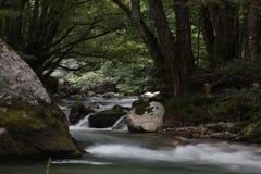 Crni Drim River Stock Photo