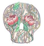 Crânio abstrato com flores da peônia Foto de Stock