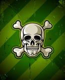 Crânio com os ossos de esqueleto no fundo militar Imagem de Stock Royalty Free