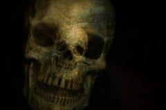 Crânio de Ghost Fotografia de Stock Royalty Free