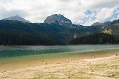 Crno Jezero (Black Lake), Durmitor Mountains Royalty Free Stock Photos