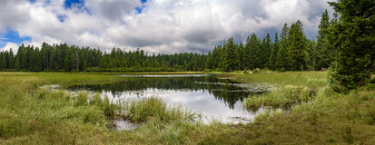 Crno jezero - Black lake on Pohorje, Slovenia. Crno jezero or Black lake is an artificial lake created in late 19th century. The dam was built at the end of a Royalty Free Stock Images