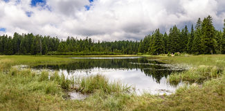 Crno jezero - Black lake on Pohorje, Slovenia Stock Photos
