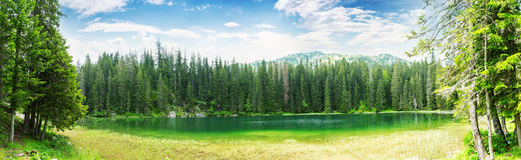 Crno Jezero, Montenegro arkivfoton