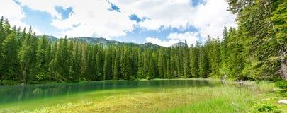 Crno Jezero, Montenegro Royalty Free Stock Photography