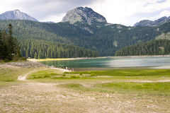 Crno lake in Durmitor - Montenegro Royalty Free Stock Photo