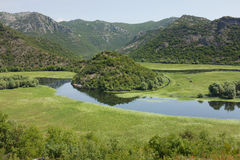 Crnojevica River Is A Tributary Of Skadar Lake, Montenegro Stock Photo