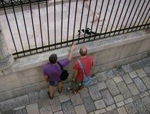 Croácia, Dubrovnik: Dois homens querem pet um gato fotografia de stock