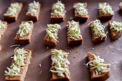 Croûtons de pain noir, fromage avec des épices pain grillé sur le fourneau image libre de droits