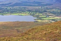 Croaghmoyle山自然遗产地区 库存照片