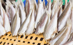 Croaker fish. In bamboo tray Royalty Free Stock Images