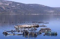 Croatia. Mussels farming in Croatia - beautiful landscape Stock Photography