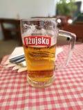 Croatia beer in zaton Stock Image