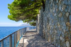 Croatia, Brela with adriatic sea and shadow of pines in summer. Dalmatia, Makarska Riviera. Croatia, Brela with adriatic sea and shadow of pines in summer royalty free stock photos