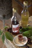 Croatia - Cherry brandy Stock Photos