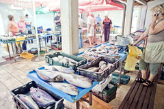 Croatia fish market Royalty Free Stock Images