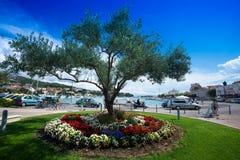 Croatia, Island Rab, port Stock Photography