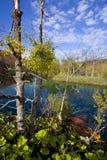 croatia jezior park narodowy plitivce Zdjęcia Royalty Free