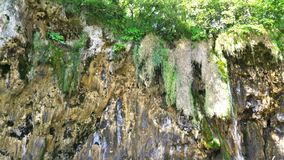 croatia jezior park narodowy plitvice sostavtsy siklawy zbiory wideo