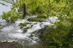 croatia jezior park narodowy plitvice sostavtsy siklawy Gwałtowni na rzece Zdjęcia Stock