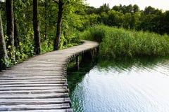 croatia jezior plitvice Zdjęcie Royalty Free