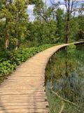 croatia lakesplitvice arkivfoton