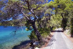 Croatia: Paradise in Mljet island Royalty Free Stock Photo