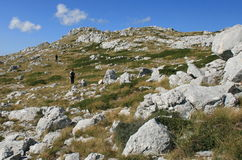 Croatia / Paradise For Trekking / Biokovo Mountain Stock Image