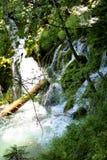 croatia Plitvice lakes royaltyfria bilder