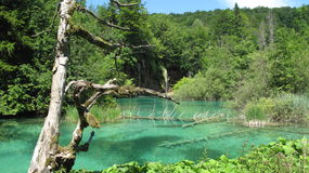Croatia, Plitvice Lakes National Park (2011)[5]. Royalty Free Stock Photography