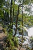Croatia Plitvice Lakes Stock Photos