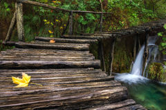 Croatia. Plitvice Lakes. Wooden bridge going up the little waterfall royalty free stock photo