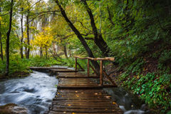 Croatia. Plitvice Lakes. Wooden footbridge with handrails over the stream to the waterfall. Plitvice Lakes National Park, since 1979 are in the register of stock image