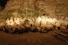 croatia pula Fotografering för Bildbyråer