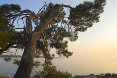Croatia - Rovinj Royalty Free Stock Photos