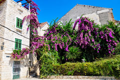 Croatia, Split Royalty Free Stock Image