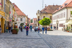 Croatia. View of Varaždin Royalty Free Stock Photos